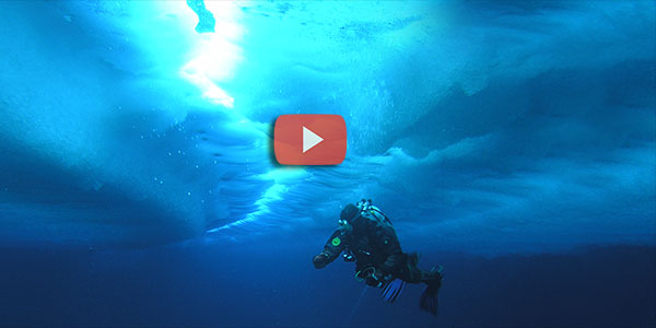 DIVING UNDER THE NORTH POLE