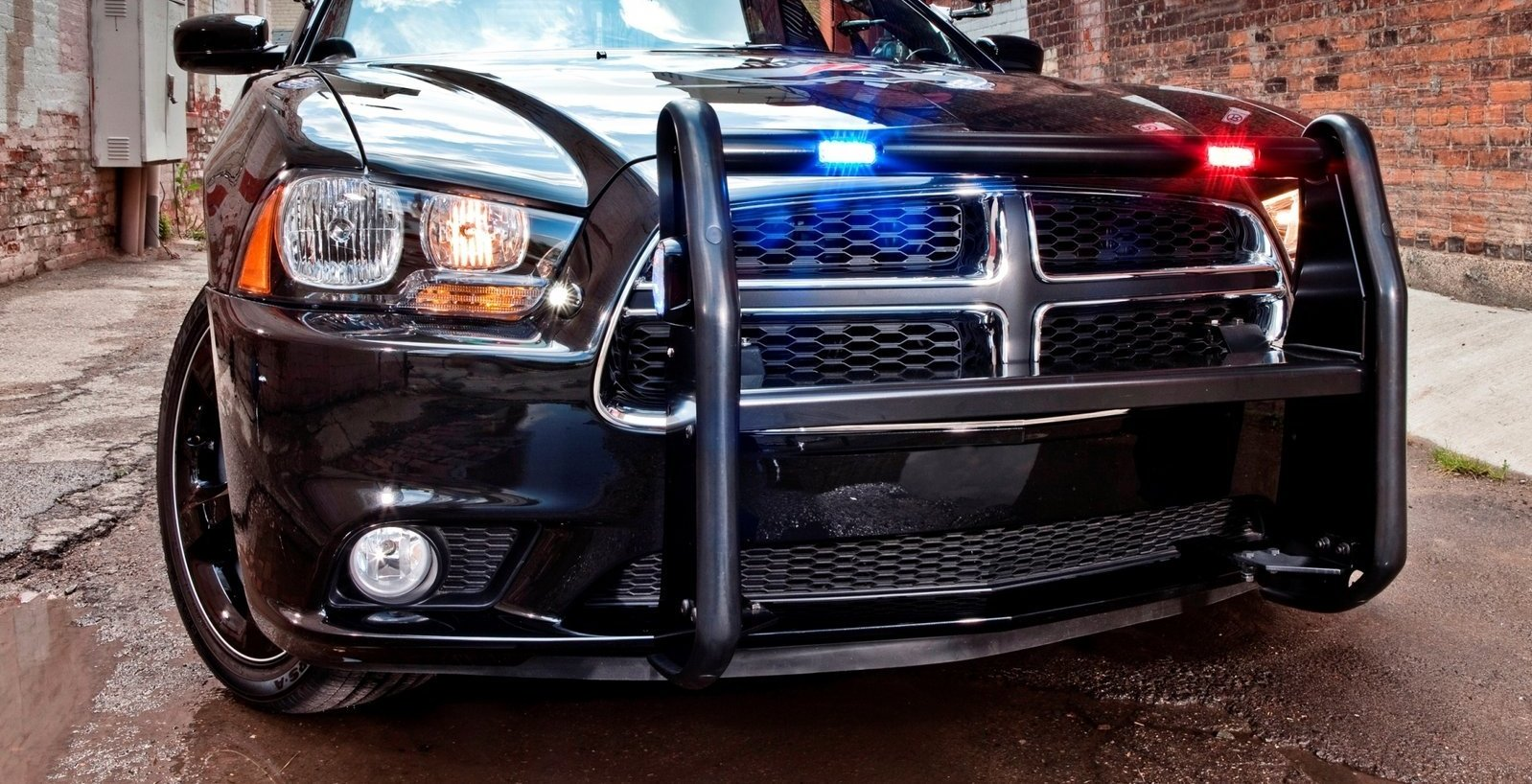 2014 Dodge Charger Pursuit No Car No Fun Muscle Cars And