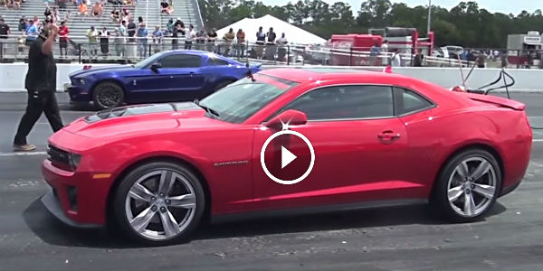 Hypnotic Muscle Battle 2013 Camaro Zl1 Vs 2014 Shelby Gt500 No Car No Fun Muscle Cars And