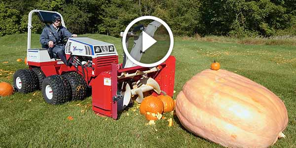 Giant Pumpkin Gets In The Ring With A Bloodthirsty Tractor